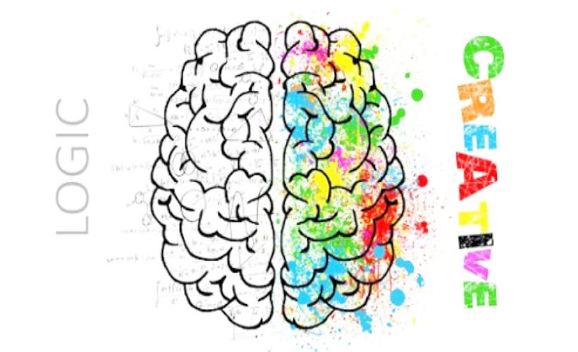 Sky Art - Tư duy não trái và não phải